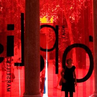 Biennale Architettura 2010-Venezia-Padiglione FRANCIA2