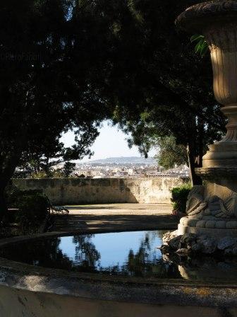 Floriana botanic garden